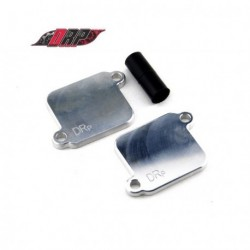 Plaques de suppression du systeme Antipollution - SUZUKI GSXR